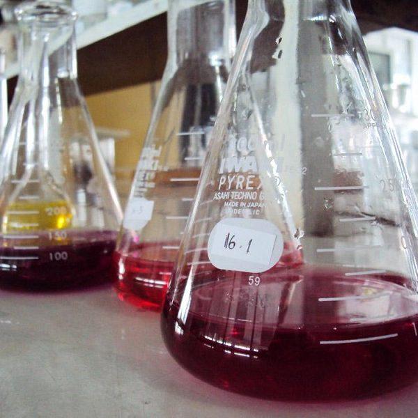 matraces-laboratorio